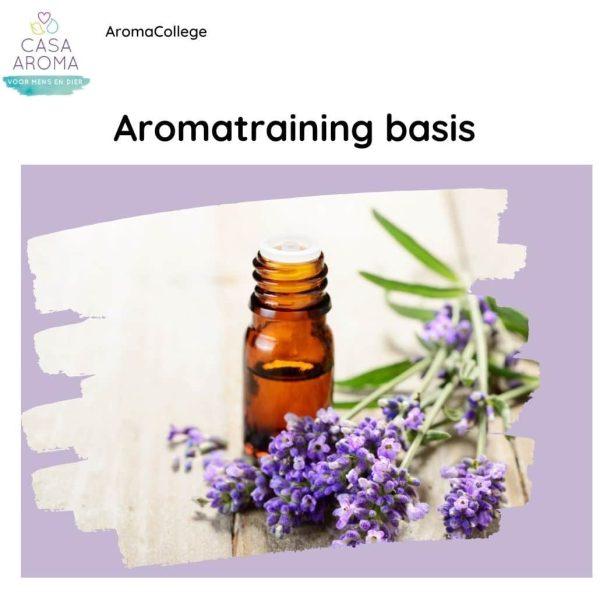 aromatraining basis