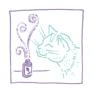 kat aroma essentiële olie